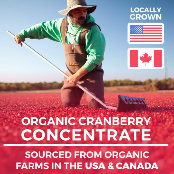 Pure Co Organic Cranberry Concentrate Capsules 60 Caps
